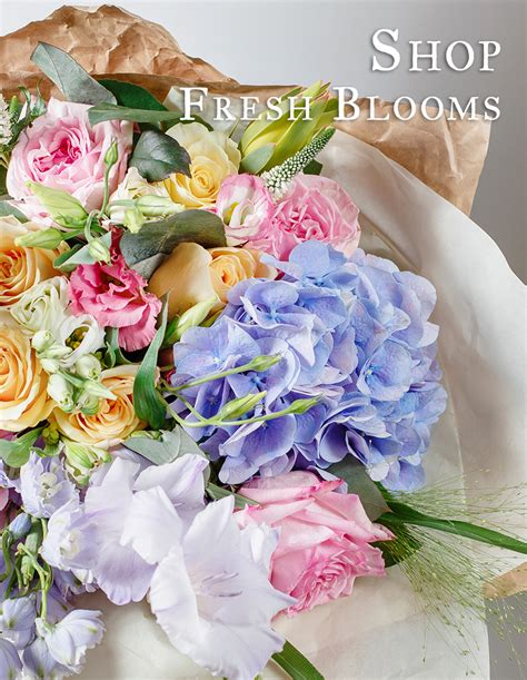 Aurora Florist  Flower Delivery By Aurora Greenhouses. Accounting Job Training Car Insurance Dealers. Fox Sports Wisconsin Dish Network. Massachusetts Colleges And Universities. Nursing Degrees In Florida Apply Master Card. Real Time Free Stock Quotes Ak Tire Service. Technical Certificate Business Administration. Digital Art Classes Online Stock Footage War. Mechanical Engineering Training Courses