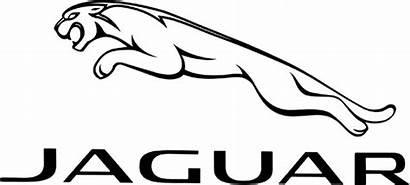 Jaguar Symbol 1080p Logos Carlogos Meaning