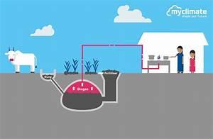 Biogas For Rural Households  U2013 Myclimate
