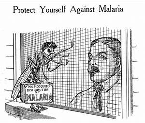 17 Best images about Malaria? on Pinterest | Cartoon, Red ...