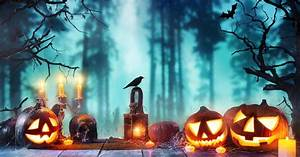 Spooky, Halloween, Decorations, For, Inside, And, Outside