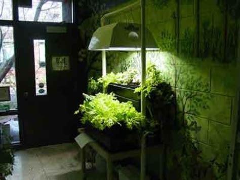 Artificial Light Building An Indoor Garden |