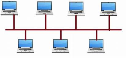 Network Lan Computer Area Metropolitan Local Javatpoint