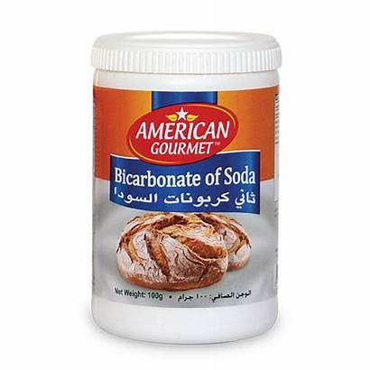 Soda 100g Bicarbonate Gourmet American Baking Pfpi