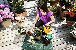 Sommerblumen Für Schatten : sommerblumen auf dem balkon ~ Michelbontemps.com Haus und Dekorationen