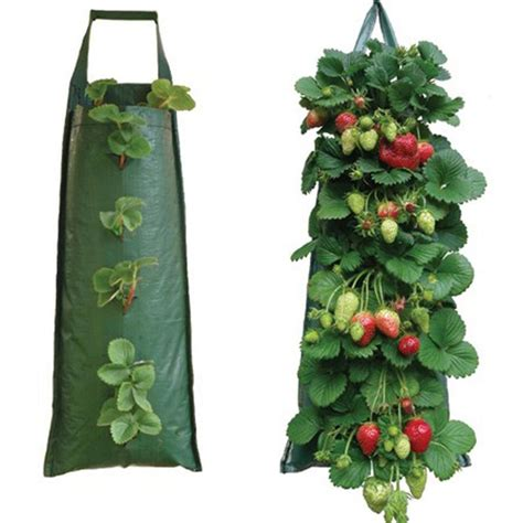 hanging strawberry planter hanging strawberry flower bag planter pouch grow fruit