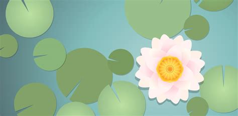 create  water lily  illustrator smashing magazine