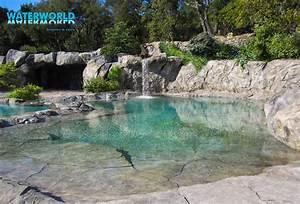 Piscine Avec Cascade : bassin jardin avec cascade ~ Premium-room.com Idées de Décoration