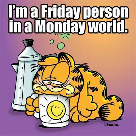 Friday Monday Meme - 222 best images about monday on pinterest