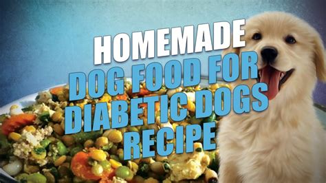 Make your own dog food : Homemade Dog Food for Diabetic Dogs Recipe (Easy to Make) - YouTube