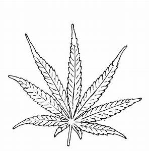 19 best images about Weed on Pinterest | Drawings, Weed ...
