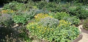 Plantes Amies Et Ennemies Au Potager : l association des plantes au potager l 39 harmony des jardins ~ Melissatoandfro.com Idées de Décoration