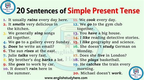 20 Sentences In Simple Present Tense  English Study Here