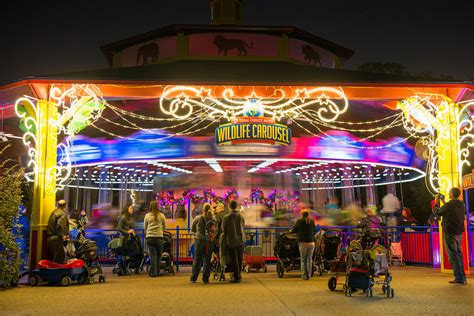 lights zoo houston interactive holidays carousel train zebra map holiday mean tickets zoolights houstonzoo parties