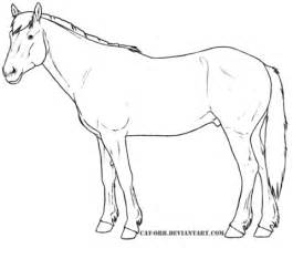 kiger mustang coloring page  printable coloring pages