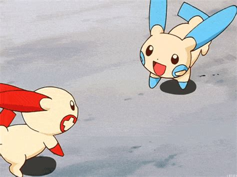 Plusle And Minun Or Pichu Bros