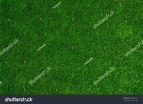 Green Grass Turf Floor Texture Background Stock Photo