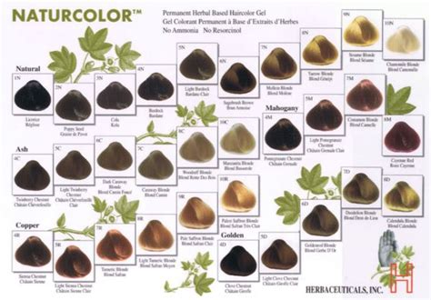 Hypoallergenic Hair Dye Or Non Allergic Hair Dye Products