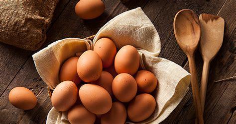 cuisine oeufs cuire un oeuf tous savoir sur les oeufs