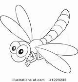 Dragonfly Clipart Outline Illustration Drawing Template Coloring Sketch Clip Moon Simple Royalty Pages Pencil Rf Bannykh Alex Getdrawings sketch template