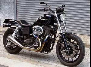 Racing Caf U00e8  Harley Fxdx Dyna 2000 By Tramp