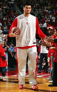 Top 10 Tallest Players in NBA History | Top Lists of ...