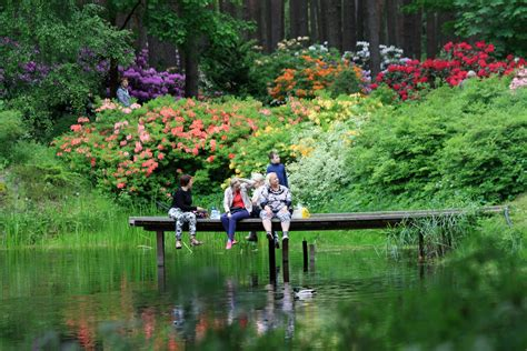 Latvijas Universitātes Botāniskā dārza Rododendru ...