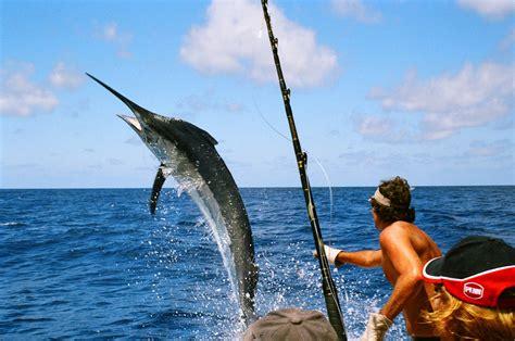 marlin fishing sea deep fish ocean florida offshore mauritius cabo mexico san shrimp california lucas hole baja pesca destin go