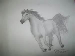 Easy Simple Horse Drawings in Pencil