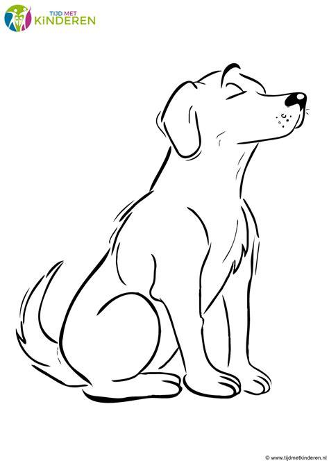 Kleine Honden Kleurplaat by 20 Idee Tekeningen Maken Honden Win Charles