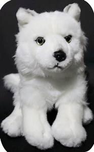 Bébé Loup Blanc : id es cadeaux ferus ~ Farleysfitness.com Idées de Décoration