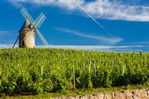 southwest style homes beaujolais wine nouveau wine villages rentals travel