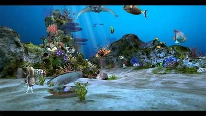 Fish Tank Picserio Aquarium 3d Amazingly