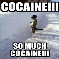 So Much Cocaine Meme - so much cocaine meme 28 images so much cocaine meme 25 best memes about cocaine cat cocaine