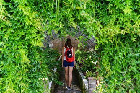 Botanischer Garten Malaga by Malaga In Spanien Sehensw 252 Rdigkeiten Tipps Und Reisebericht