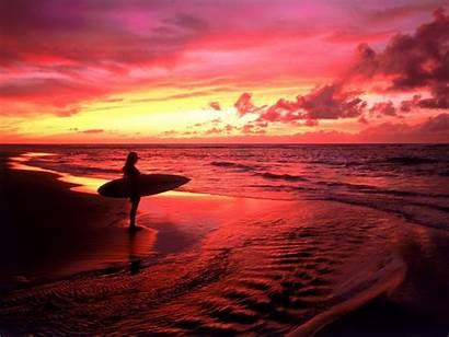 Surf Surfer Sports Water Surfs Surfing Sunset