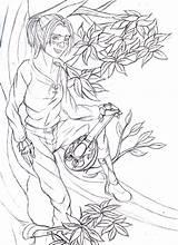 Bard Elf Wood Sketch Io Deviantart sketch template
