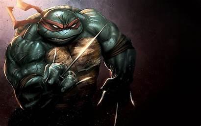 Ninja Turtles Raphael Teenage Mutant Wallpapers 1920