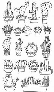 Cactus Coloring Page  Colouring
