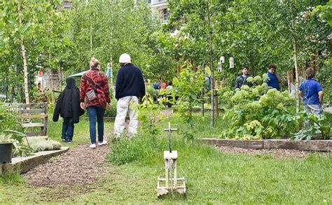 how to start a community garden dear modern farmer how do i start up a community garden