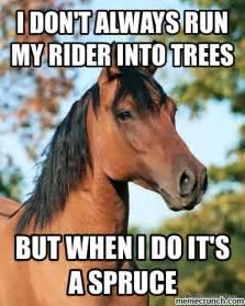 Thoughtful Memes - thoughtful horse