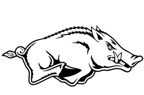 razorback coloring page  wild boars category select