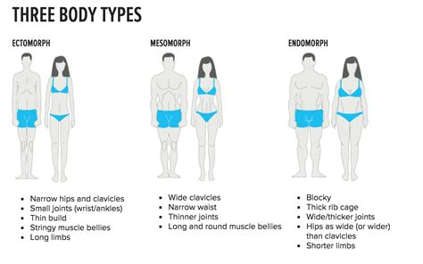 What's Your Body Type?