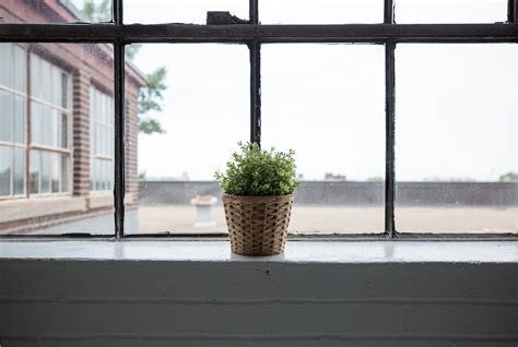 Balcony Sill by Free Images Plant Wood Home Wall Balcony Window