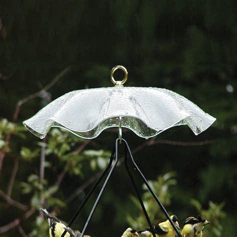 birds choice clear plastic bird feeder weather guard