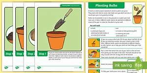 Ks1 Planting Bulbs Activity Instructions