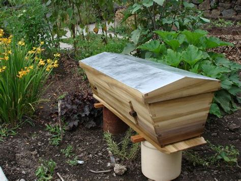 Backyard Honey Bee Hive by 71 Best Images About Yard Help On Gardens