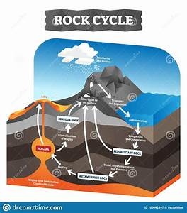 Rock Cycle Vector Illustration  Educational Labeled Geology Process Scheme  Stock Vector