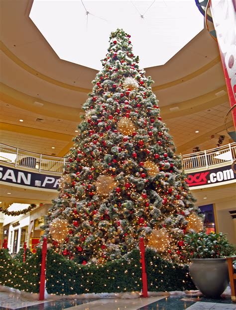 a mall tree picture by unclejimmy for christmas trees