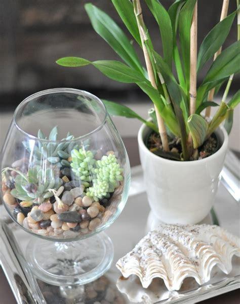 Terrarium Im Glas by Pflanze Im Glas Selber Machen Ostseesuche